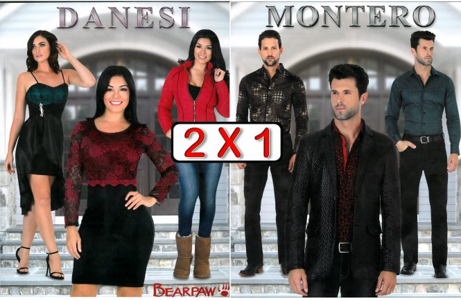 Catalogo Danesi Montero